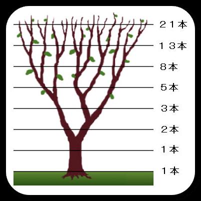 DropShadowtree