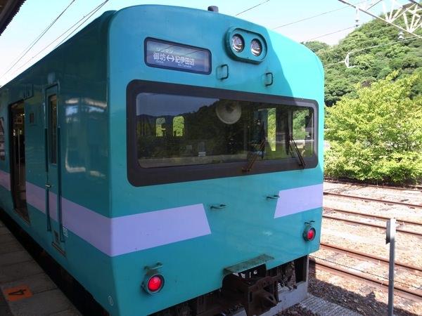 IMG 2600
