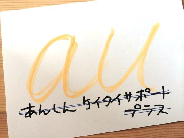 IMG 4453