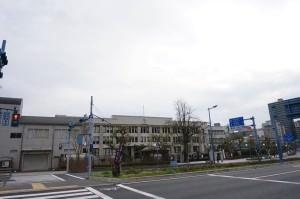 【大阪 桜】造幣局 桜の通り抜けは4月11日から17日まで