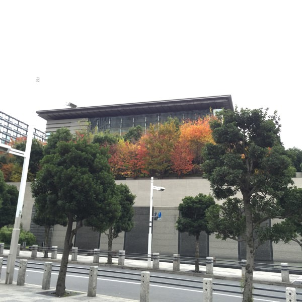 首相官邸の秋